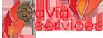 Avia Services